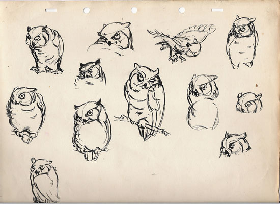 Owl by Robert Snowden Morrows.